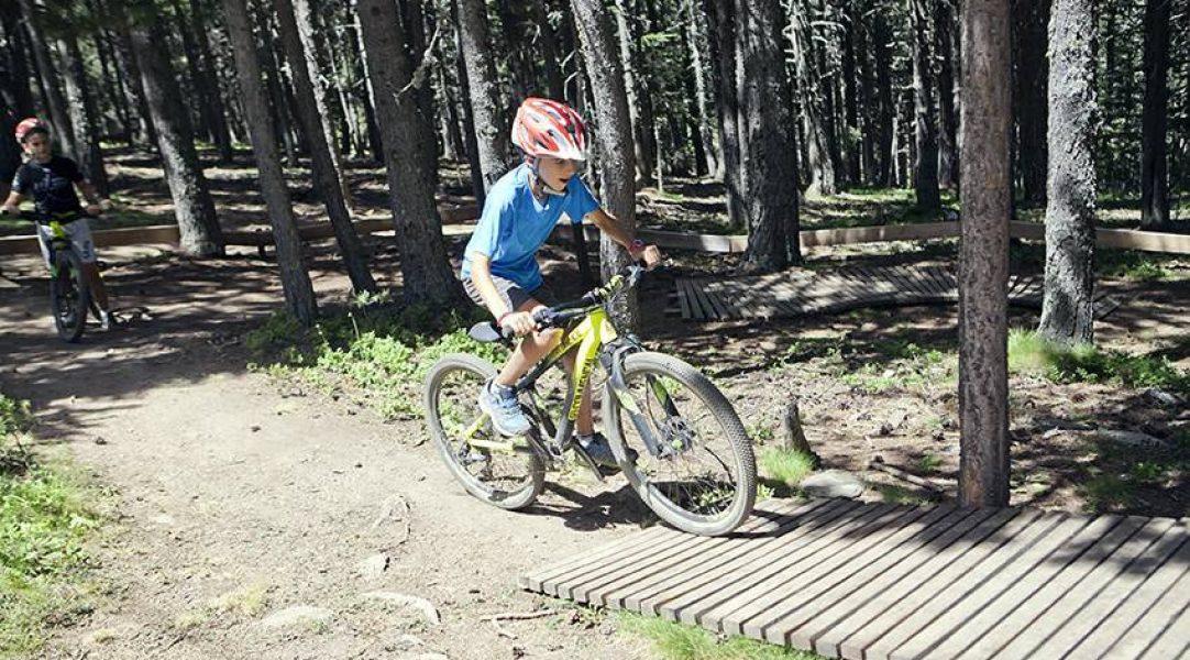 vallnord-bike-park-woodpark