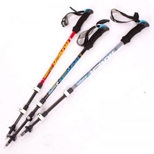 Bastones de esquí para niños