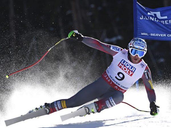 Esquís de pista o alpinos