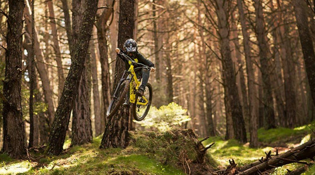 Descenso en bici MTB en Bike Parks