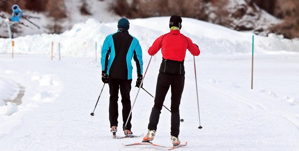 palos de esqui nórdico