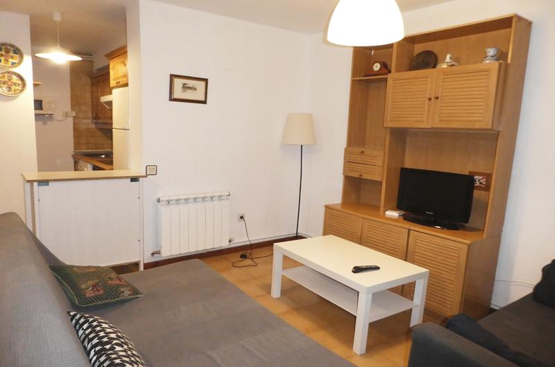 Apartamentos Jaca 30003