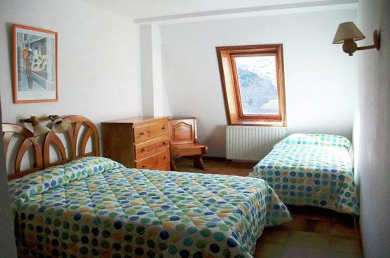 Apartamentos Formigal 300011