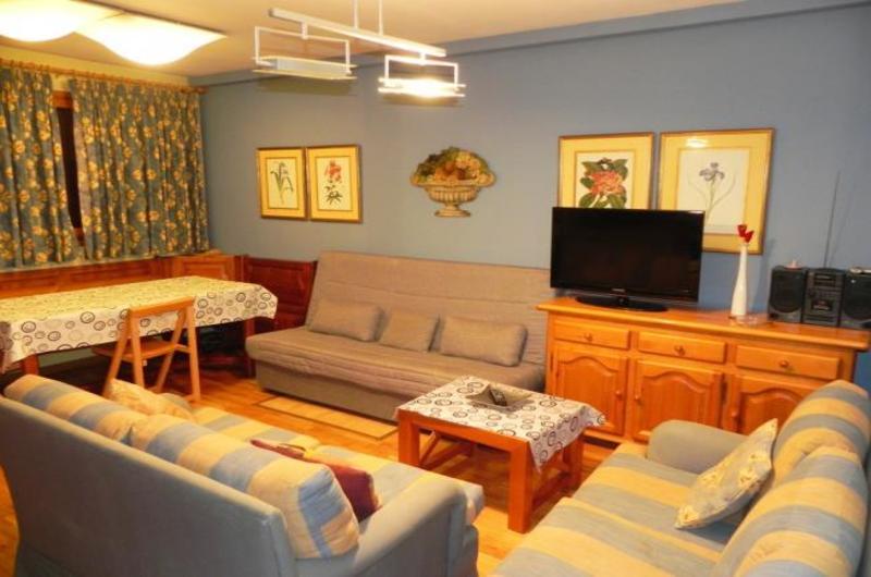 Apartamentos Formigal 300020