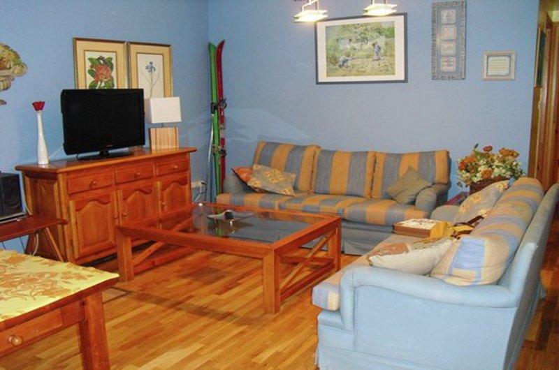 Apartamentos Formigal 300022