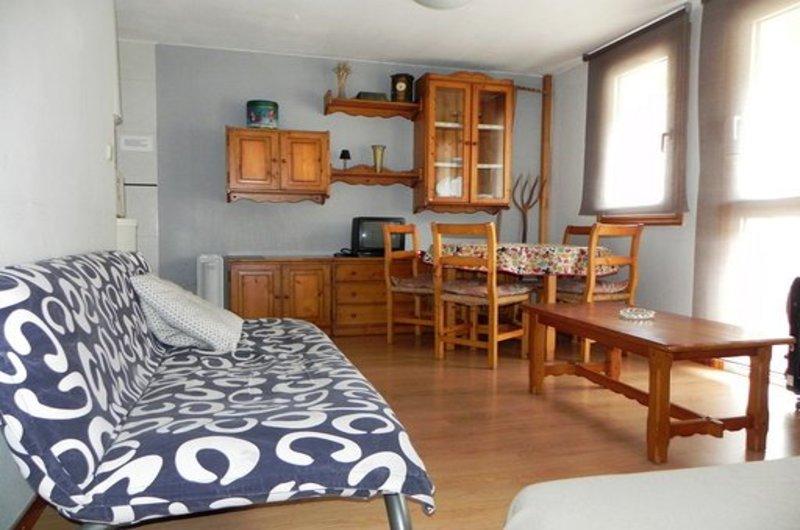 Apartamentos Formigal 30006
