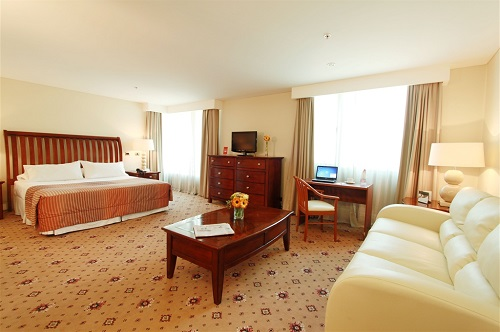 Hotel Torremayor Lyon10