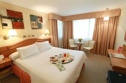 Hotel Torremayor Lyon9