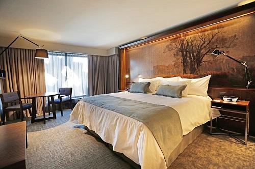 Hotel Cumbres Lastarria6