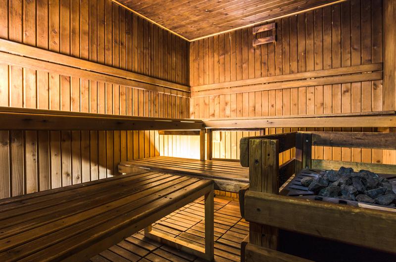 Fotos de Hotel Himalaia Soldeu en SOLDEU, ANDORRA (16)