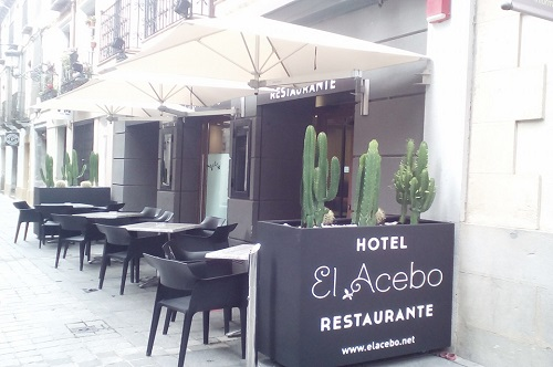 Photos of Hotel El Acebo in JACA, SPAIN (8)