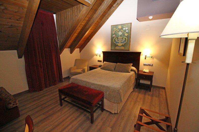 Hotel Villa De Sallent 45