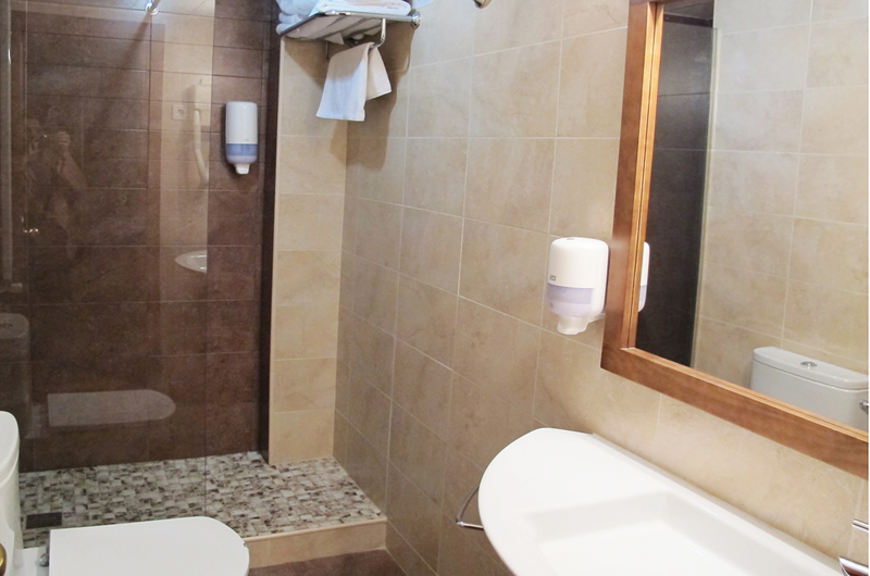 Photos of Hotel A Boira in JACA, SPAIN (5)