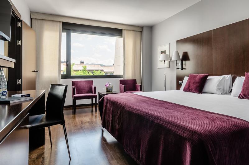 Foto 18 Hotel Hotel Reina Felicia, JACA