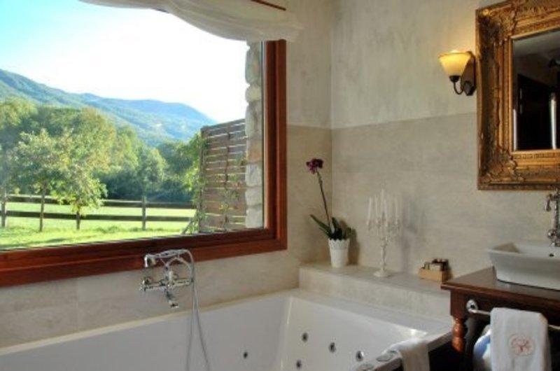 Photos of Hotel Selba D'Ansils in BENASQUE, SPAIN (21)